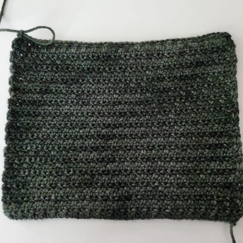 alpine stitch back example for blog post