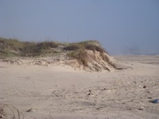 Galveston 09 114 (1)