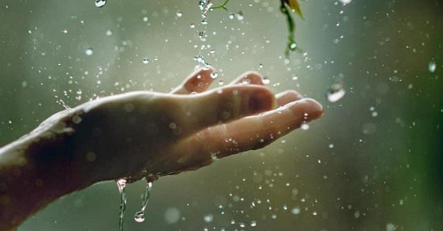 погода, дощ, літо