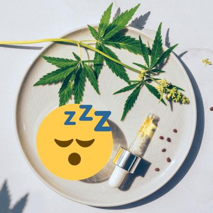 cbd oil for sleep feature