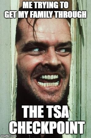 TSA Memes - trying to get my family through TSA Airport Memes