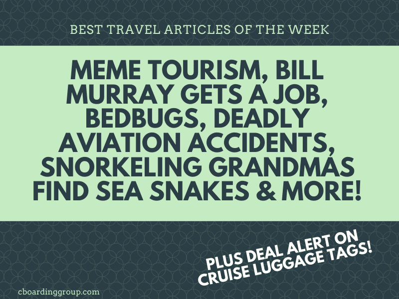 Meme Tourism Snorkeling Grandmas Find Sea Snakes And More Best