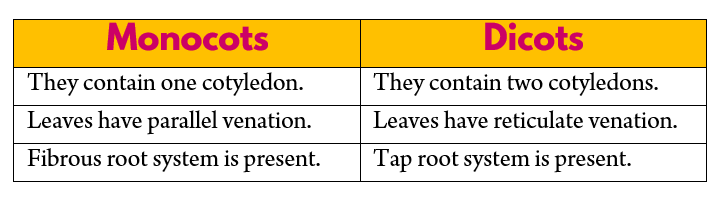 Difference between Mocots and Dicots