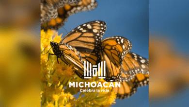 Esfera Pública: Michoacán y su nueva marca