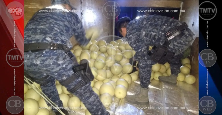 Incautan una tonelada de marihuana oculta en melones