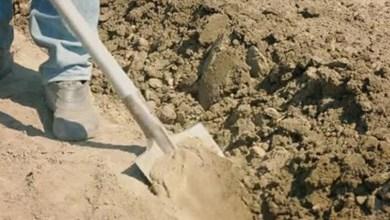 Photo of Hombre cava la tumba de su hija; encuentra un bebé con vida