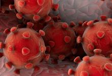 Photo of Ante posible pandemia, científicos mexicanos trabajan en estrategias de detección del coronavirus
