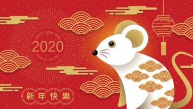 Photo of 2020 año de la rata; prosperidad y estabilidad financiera
