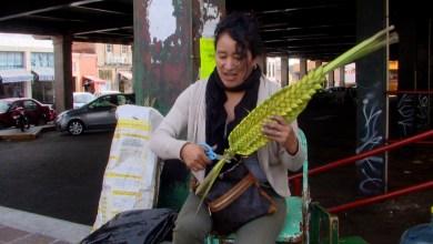 Photo of Por cuarentena, vendedores de palmas notan perdidas económicas este Domingo de Ramos