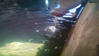 Photo of Morelianos denuncian desabasto de agua; amenazan con protesta