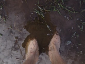 Enfiado na lama. Quase um nativo.
