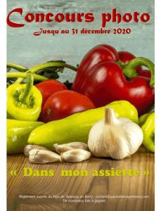 Affiche Concours photo Pays de Valençay en Berry