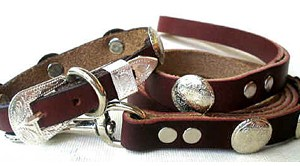 CCC Western Leather Dog Collars - Speedy Bronco Baby Set