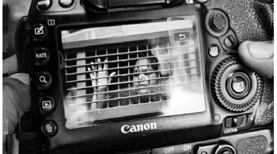 FExB/মুক্ত প্রকাশ shocked at Rozina Islam refused bail