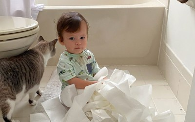 little boy sitting on bathroom floor playing with toilet paper as cat walks behind him
