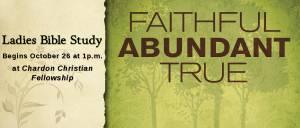 Ladies Bible Study: Faithful, Abundant, True