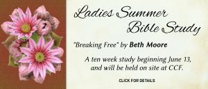 Ladies Summer Bible Study 2017