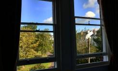 Woodbine Guesthouse B&B Room View