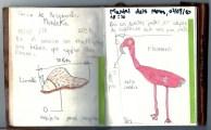 Cuaderno de campo de Andrés Ugarte del blog devueltaconelcuaderno