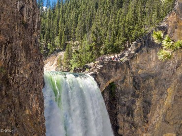 Top of the Lower Yellowstone Falls