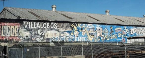 Villa Lobos Pit Bull Center
