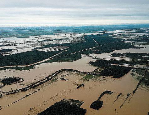 Conflictos sociales y migración, otros efectos del cambio climático