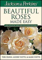 Beautiful Roses Made Easy