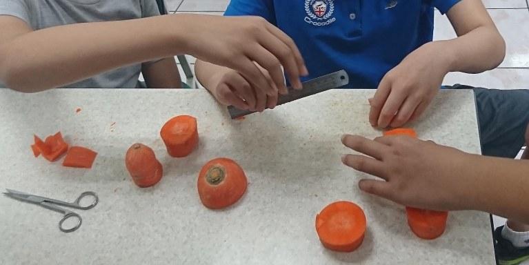 108課綱國中生物紅蘿蔔實驗測試