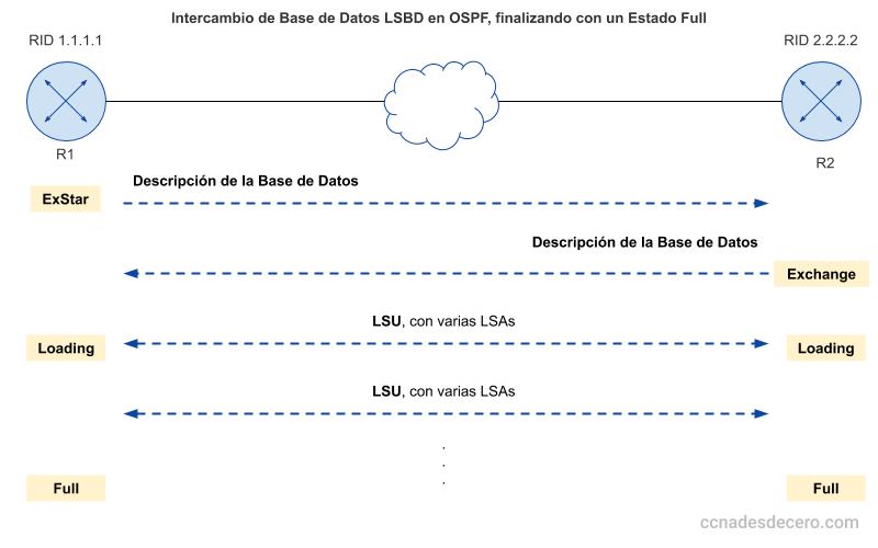 Intercambio de LSBD en OSPF