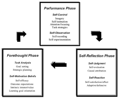 self regulation learning dissertation The effects of self-regulation strategies on reading comprehension, motivation for learning, and self-efficacy with struggling readers cassandra l cosentino.