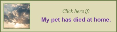 My pet has died at home, Chartiers Custom Pet Cremation