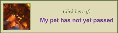 Button-PetNotYetPassed