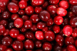 closeup of cranberries