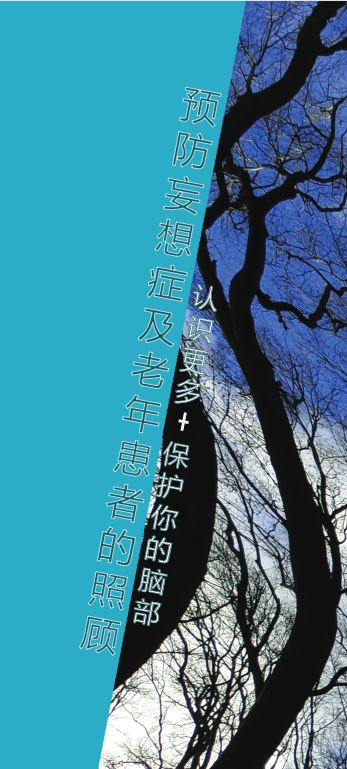 Delirium Simplified Chinese