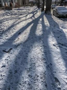 Spring snow in Winnipeg.