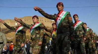 Fuerzas kurdas FDS