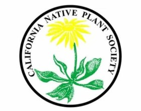 Native Plant Gardening Workshop