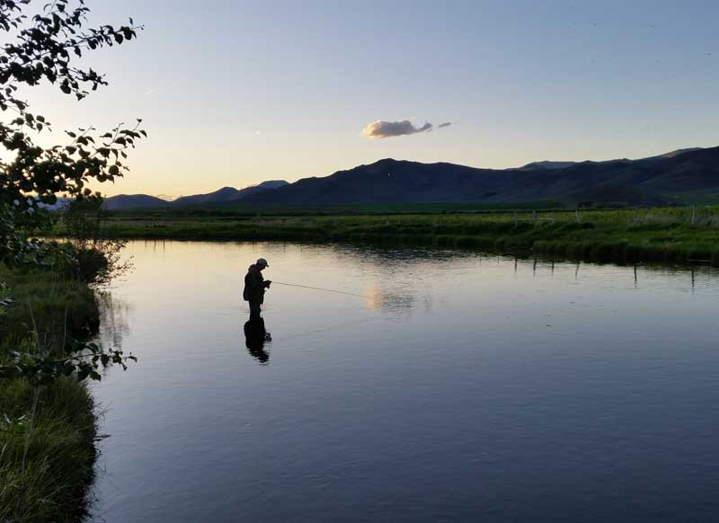 Testimonials Fly Fishing with CD Rods USA