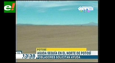 Aguda sequía en el norte de Potosí
