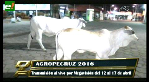 Agropecruz 2016 transmisión al vivo!