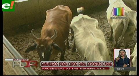 Ganaderos piden cupo para exportar carne