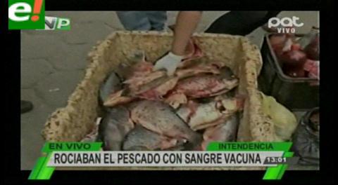 Santa Cruz. Rociaban el pescado con sangre vacuna