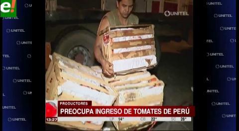 Preocupa a los productores el ingreso de tomates del Perú