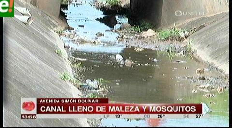 Canal lleno de basura cerca del hospital El Bajío es criadero de mosquitos