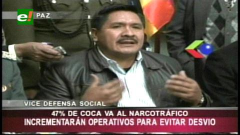 Cáceres reconoce que el 47% de la producción de coca es desviada al narcotráfico
