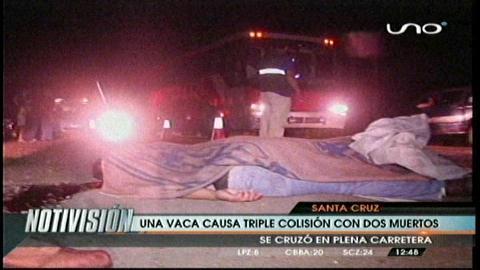 Triple colisión causada por una vaca provoca dos muertos