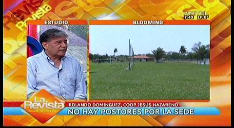La deuda de Blooming a la Cooperativa Jesús Nazareno asciende a 600 mil dólares