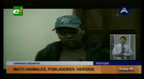 Truenos y granizo afectan a personas y ganado en Betanzos, Potosí