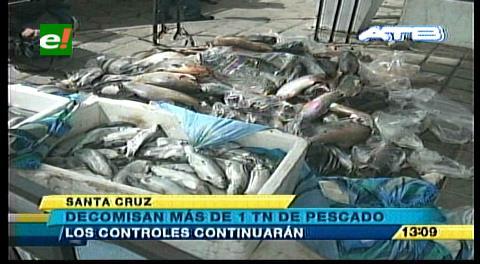 Decomisan una tonelada y media de pescado en mal estado en Santa Cruz