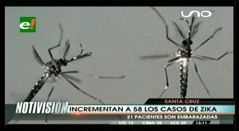 Sedes registra 58 nuevos casos de zika en Santa Cruz